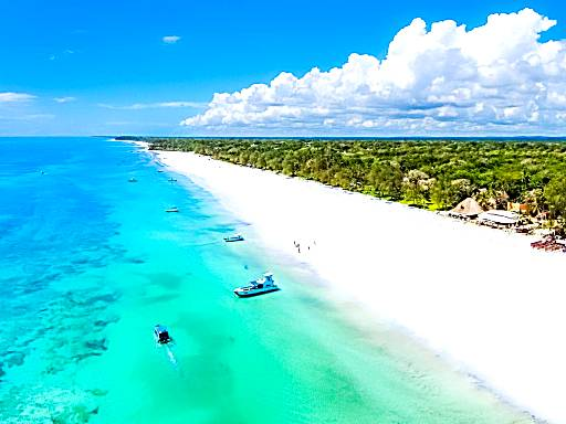 Top 16 Central Luxury Hotels in Diani Beach